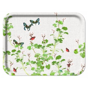 Ary Tray - Michael Angove - Geranium White - Rectangular