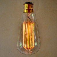 Vintage Style Edison Light Bulb - Squirrel Cage