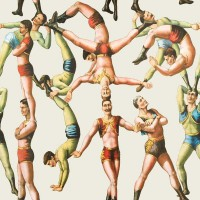 Mind The Gap  Wallpaper - Acrobats