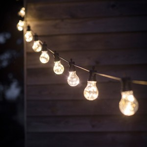 Festoon Lights - 20 Bulbs