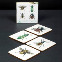 Insect Coasters - Curios/Wellcome Collection